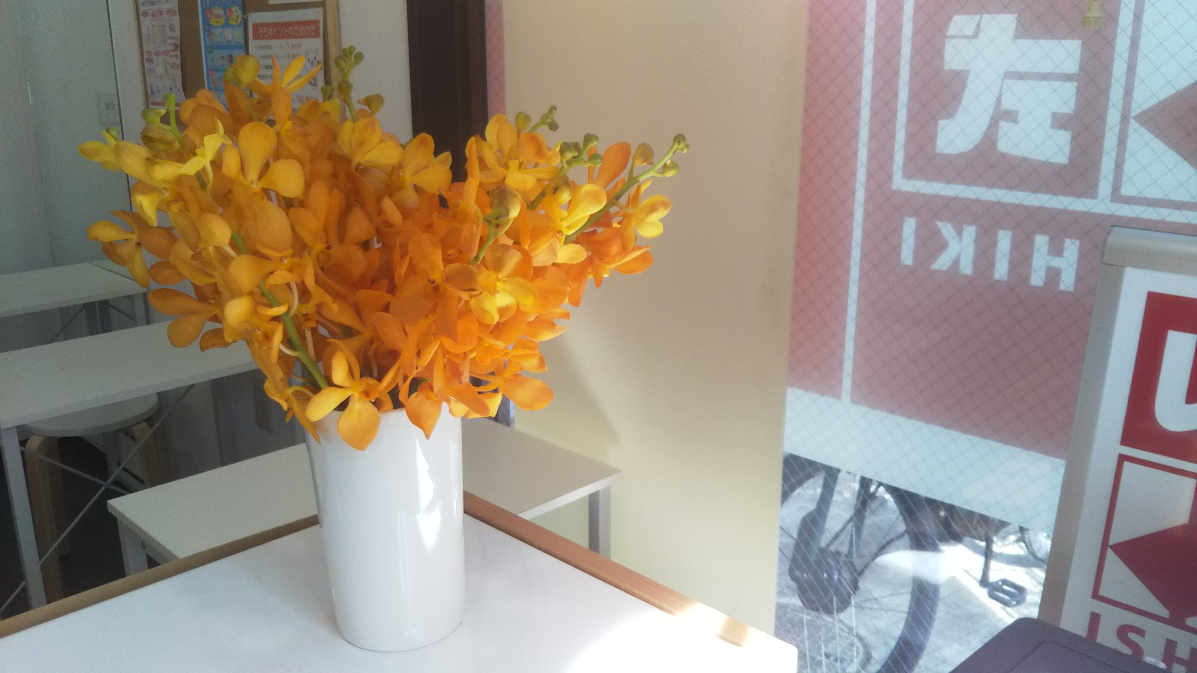 思いがけない花束の贈り物に癒しをいただきました^^